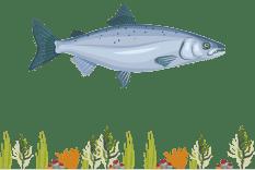 Fiskeldi
